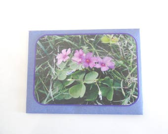envelope gift + purple flowers photo card, table decoration, guest gift