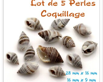 Set of 5 2 sizes mix natural shell beads