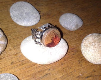 With rosewood ring with adjustable filigree sapwood