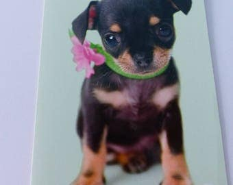 small dog puppy card folded card with envelope