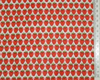 "Fabric - ""Juicy"" - Makower 04"