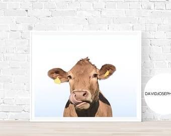 Cow Print, Cow Wall Art, Cow Decor, Animal Photography, Modern Print, Cattle Print, Farm Animal Print, Living Room Decor, Digital Download