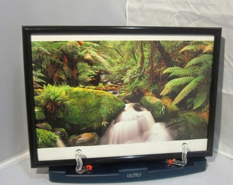 Ken Duncan photograph print Young Creek, Vic, Australia - framed