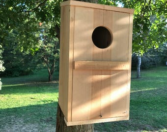 Owl house screech Handmade Rough Sawn Cedar