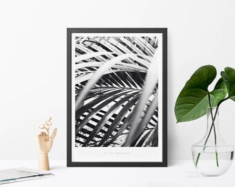 Toliara Botanical Palm Leaves Scandinavian Design Wall Art Poster