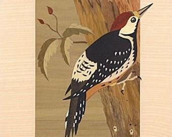 "Marquetry art ""Woodpecker"" 25cm x 20cm"