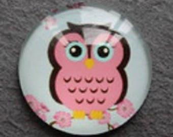 pretty OWL pink 20mm