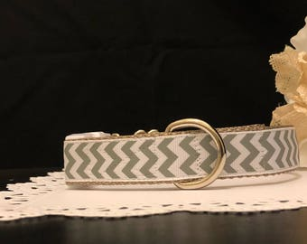 "Handcrafted Dog Collar- ""Jefferey"" silver 1"" inch collar"