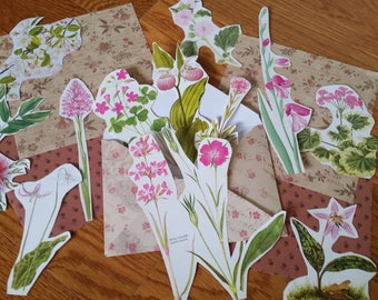 Pink Botanical Collage Pack, 15+ pieces paper pack, Paper ephemera lot, junk journal pack, theme paper lot