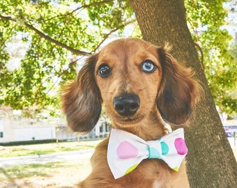 Dog Bow Tie | Polka Dots | Free Shipping to Canada