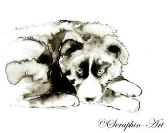 Border Collie Puppy Original Watercolor Painting