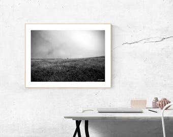 New Zealand Country - Landscape Photography - Photo Art - Foto Arte - Paesaggio - Foto Bianco e Nero - Black and White Photo