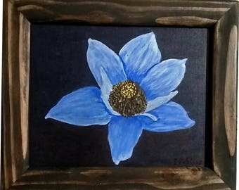 Blue Anemone with frame