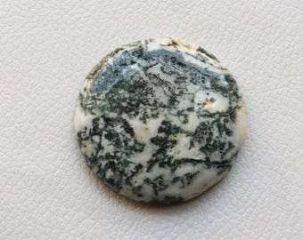 Tree Dendritic Opal - AAA Quality Dendritic Opal Round Cabochon Loose Gemstone