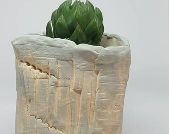 Plant pot, succulent pot, cactus pot, home studio pottery, ceramic, planter.