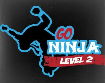 Go Ninja Level II Lesson Plans and Curriculum