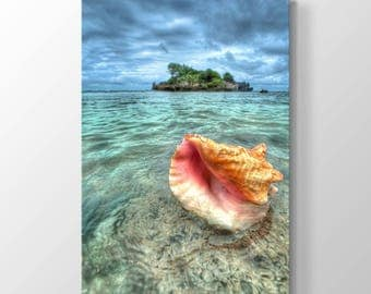 Sea Shell and Island Printing On Canvas, Wall Art, Canvas Prints, Room Deco, Beautiful View, Wonder, Sea