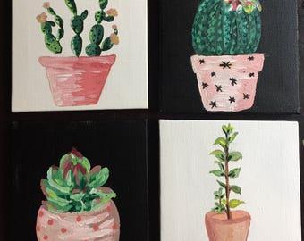Succulent Set #1