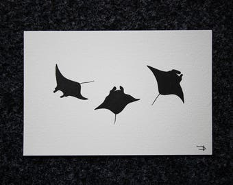 Manta Ray Art - Pen and Ink - 14x21cm