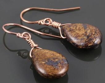 Bronzite Earrings. Rose Gold Filled Ear Wires. Genuine Gemstone. Briolette Earrings. f17e020