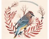 Art - Illustration - Waxwing Art - Waxwing Painting - Bird Illustration - Bird Art - Bird Print - Waxwing Print - Waxwing