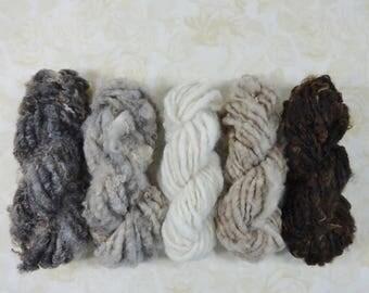 Handspun Yarn Chunky Naturals Pack Mini Skein Collection  50 yards gray tan cream brown