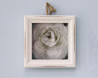 Framed  Photograph of Your Choice, Flower Decor, Floral Art Print, French Country Wall Art