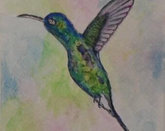 Watercolor Hummingbird Card Watercolor Cards Watercolor and Ink Hummingbirds Greeting Cards Watercolors