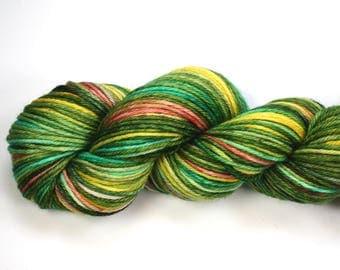 Polliwog--hand dyed worsted weight, merino superwash (218yds/100gm)