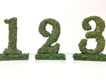 Moss Covered Standing Wedding Table Number