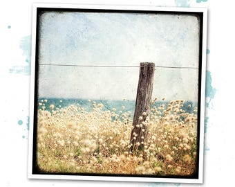 Landscape of Houat - Britany - art photo signed 20 x 20 cm