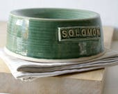 SALE - Large handmade pet feeding bowl 'solomon' in forest green