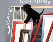 Custom Listing Reserved for Beverly