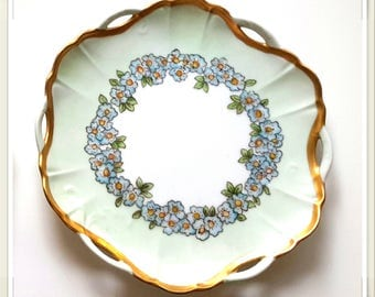 BEAUTIFUL MINT Bavarian Hand painted plate