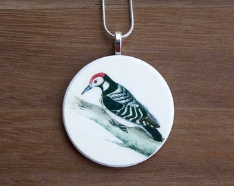 Woodpecker Necklace, Woodpecker Pendant, Vintage Woodpecker, Handcrafted Jewelry, Gift for Bird Lovers, Free Shipping in US