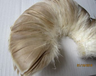 "Goose Nagorie Feathers 12"" strip"