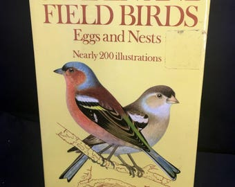 Garden and Fields Birds Eggs and Nests