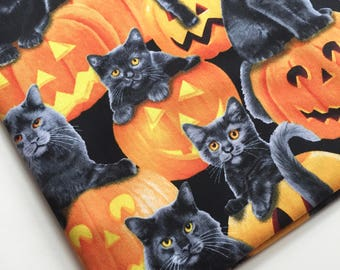 Jack-O-Kitty Fabric by Timeless Treasures Fabric, Cat and Pumpkin Fabric, Black Cat Fabric, OOP, HTF
