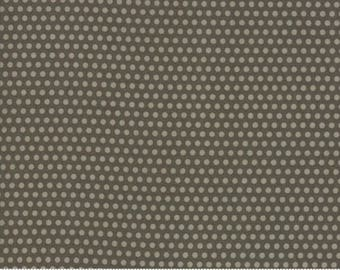 Hocus Pocus by Sandy Gervais - Dots in Ashes (17936-26) - 1 Yard