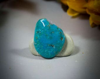 Mexican Turquoise Cabochon 40-4757