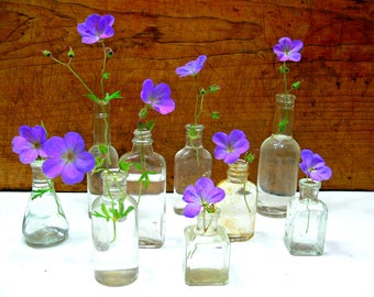 Vintage Bottle Collection - Clear Glass Vases - Rustic Wedding Decor - Table Centerpiece
