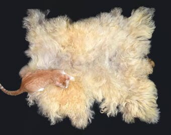 Cruelty Free, Cat Bed, Dog Bed, Pet Bed, Felted Wool, Fleece Rug, Navajo Churro, Blonde, Ethical Sheepskin, Eco Friendly, Rustic Decor, Mat