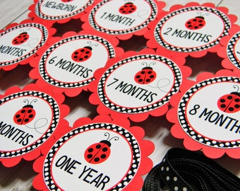 Ladybug First Birthday Party -  First Year Photo Clothespin Banner - Ladybug Party Decorations - Picture Banner  - Ladybug Decor
