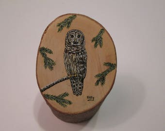 Barred Owl hand painted on wood by Ann Kelly