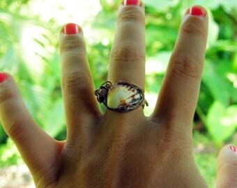Anillo del Mar ring- small