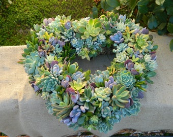 Succulent Wreath, Heart Shaped Succulent Wreath, Valentines Day Wreath, Valentines Day Gift, Wedding Table, Housewarming Gift