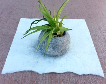 Wet Felted Pod for Tillandsia (Air Plant)- Natural White/Gray Alpaca Wool