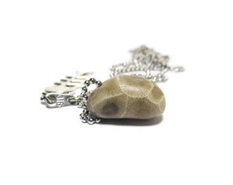 Petoskey Stone Necklace Fossils and Fishbones with 30 Inch Stainless Steel Petite Ball Chain and 316 Stamped Tiny Tag Lake Michigan Fossil