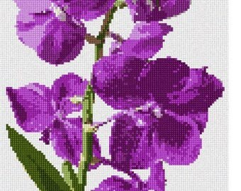 Needlepoint Kit or Canvas: Vanda Orchid