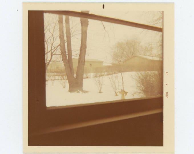 Vintage Snapshot Photo: Winter View; Squirrel in Birdbath (712627)